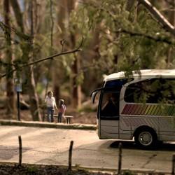 El bus